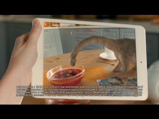 Смотри, Динозавры! Акция в Дикси! #ДиксиДино