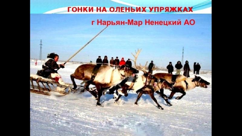 Гонки на оленьих упряжках г Нарьян-Мар Ненецкий АО