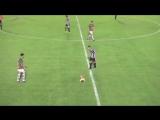 В Аргентине собака выбежала на поле и срубила игрока