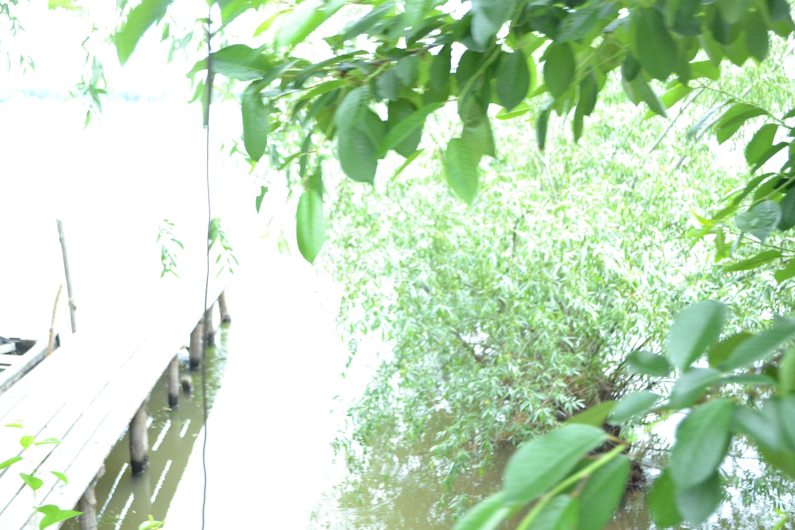Елена Руденко (Валтея). Вилково - Украинская Венеция. 0км. Украина. одесская обл. Sco9mwGIZ0c