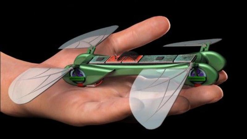 Орнитоптер – механическая стрекоза