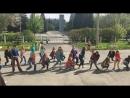 Рефлекс Танцы танцы