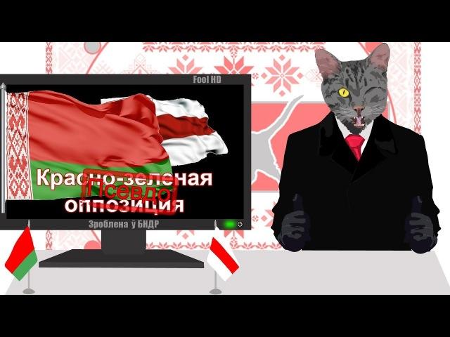 AlexTV, Шикардос, Хлорка ТВ, красно-зеленая оппозиция Серый Кот Шоу выпуск №6
