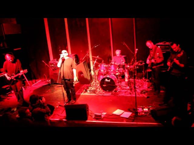 Świetlicki Olifant Ucho 11.12.2010