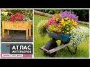 Цветники и клумбы своими руками. Необычные идеи для дачи и сада