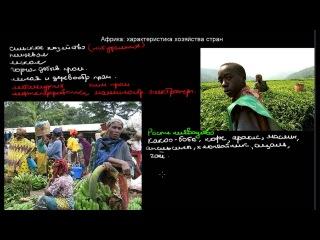 525  Африка характеристика хозяйства стран