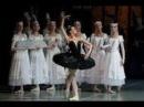 В преддверии балета Лебединое озеро. Поговорим