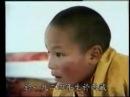 HH the 17th Karmapa Situ Rinpoche