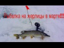 Жерлицы. Ловля щуки на жерлицы. Весенний лёд. Ловля щуки в марте.Зимняя разведка по щучьим местам.