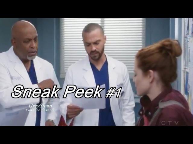 Grey's Anatomy 14x12 Sneak Peek 1 Season 14 Episode 12 Sneak Peek