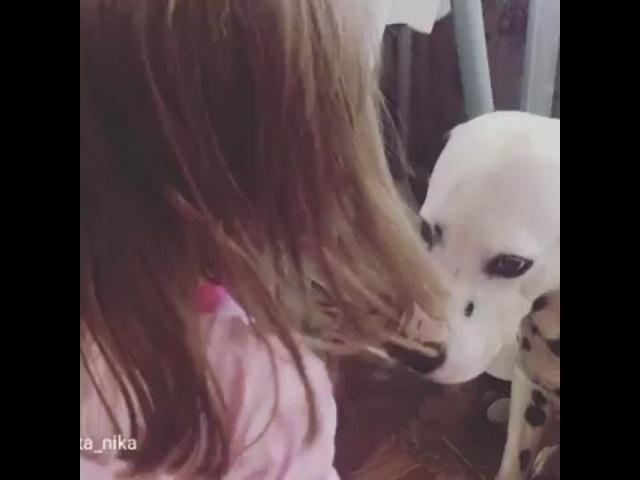 Sunny_torik video
