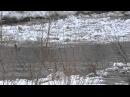 Ледоход в тайге р Осипово