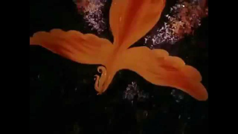 Жар-птица (1984). Советский мультфильм | Золотая коллекция