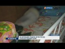 На Харківщині родина загинула від отруєння чадним газом