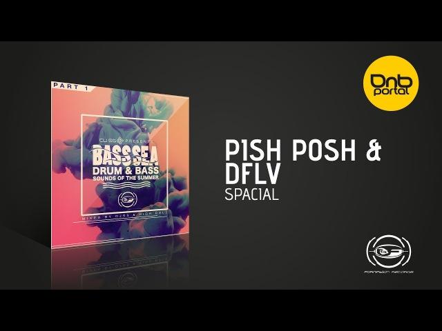 Pish Posh DFlv - Spacial [Formation Records]