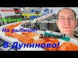 Бесплатные вакансии в Польше! Работа на рыбном заводе в Дуниново!