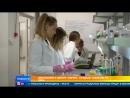Школьники в центре Сириус создают таблетки от рака