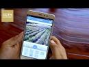 Мобильные приложения помогают отслеживать ситуацию на чайной плантации в режиме онлайн
