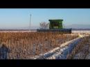 Зимняя уборка подсолнечника John Deere