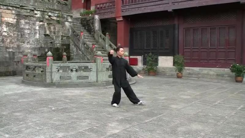 Ван Лин Тайцзицуань 24 формы Ян