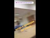 Video By Ariel Lasker