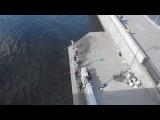 Ловят рыбу мужики.Нева 26.08.2013 Neva river