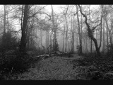 Agalloch The Melancholy Spirit