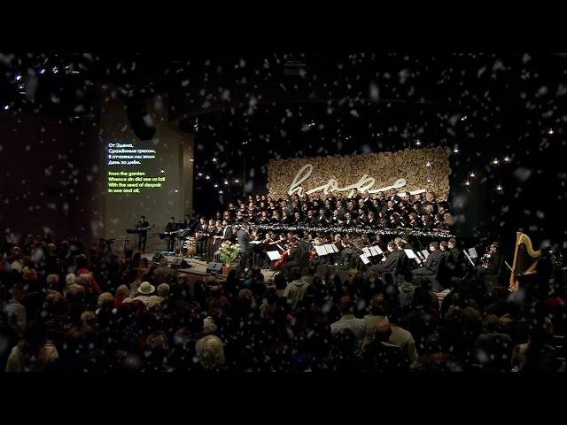 Новая Рождественская песня: Гряди, Эммануил / Oh Come Immanuel (СЛОВО БЛАГОДАТИ / slovo.org)