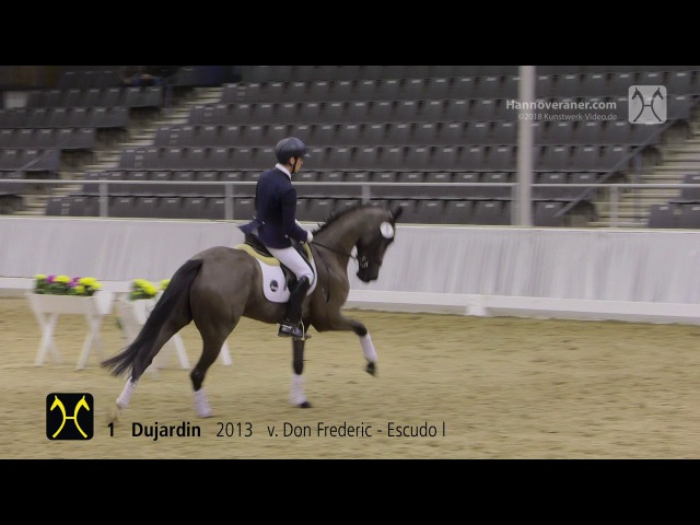 Verden Auction on January 20, 2018 - Training-No. 1 Dujardin by Don Frederic-Escudo l