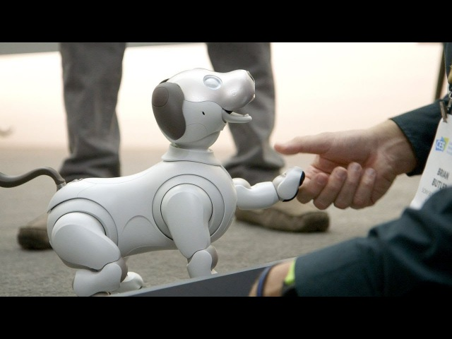 Sonys new Aibo is a very good robot dog