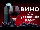 Почему харамное вино называется угощением РАЯ