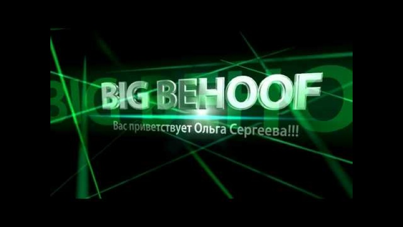 Моё видение об отчетах и рекламной работе в проекте BIG BEHOOF