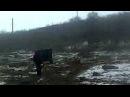 Вывозка леса,Акация