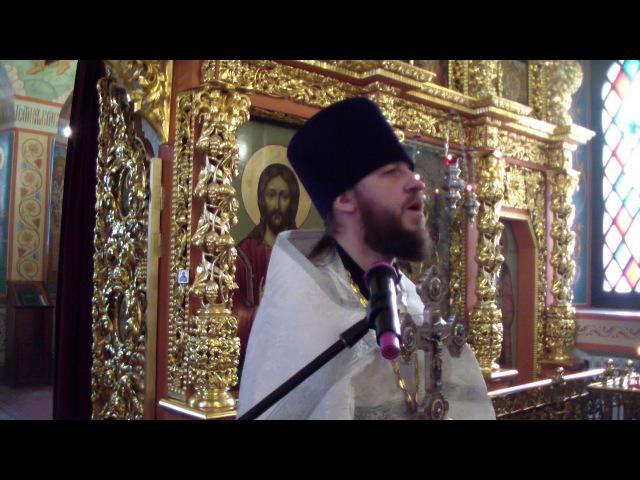 Протоиерей Павел Сударев - Проповедь в день Богоявления