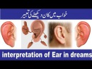 Khawab kaan dekhnay ki tabeer. خواب میں کان دیکھنے کی تعبیر. interpretation of ear in dreams