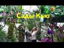 Королевские ботанические сады в Лондоне Кью Гарденс Kew Gardens. Куда пойти в Лондоне?