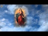 Аве Мария Исполняет Селин Дион YouTube