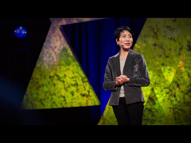 An economic case for protecting the planet   Naoko Ishii