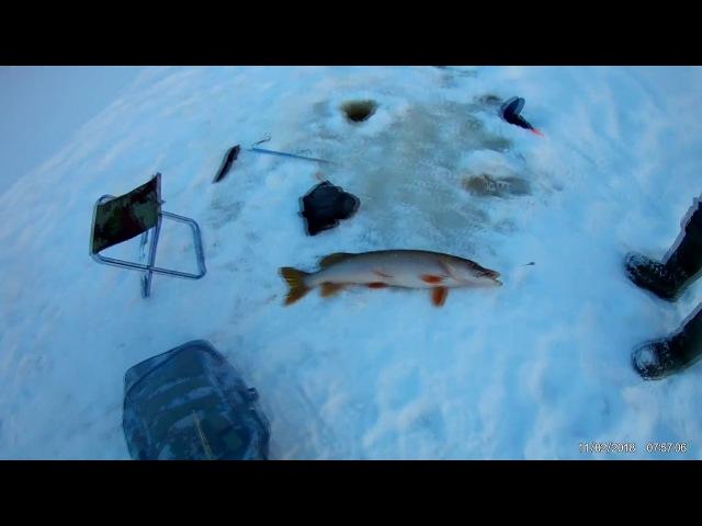 Рыбалка на жерлицы 11.02.2018
