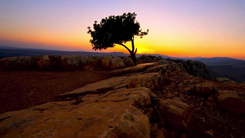 Прекрасный Израиль