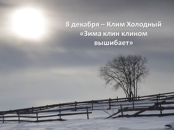 Фото -83192862