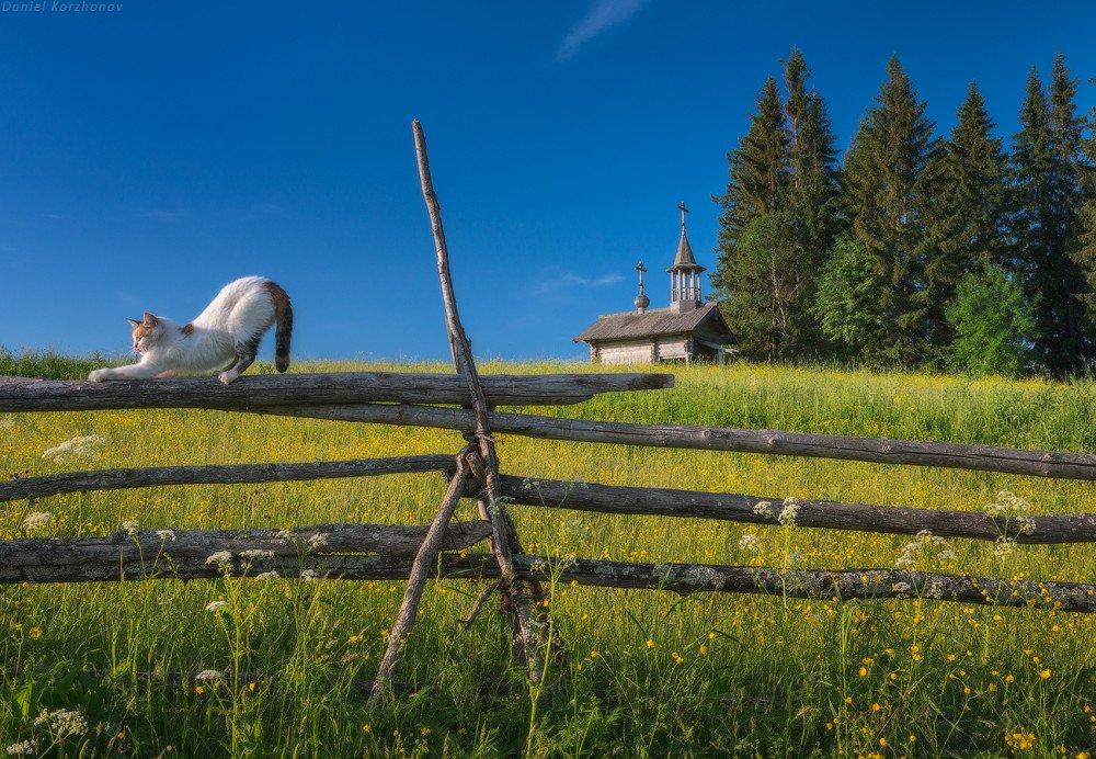 9p0swXF75a8 - Кенозерский национальный парк – достояние России
