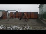 Вольеры для служебных собак. Пограничная застава, Киргизия. (Часть 2)