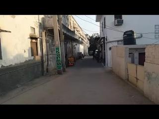 Прямой эфир из Индии, Пушкар