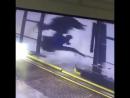 Bizarre Car Wash Accident - Video KillSomeTime