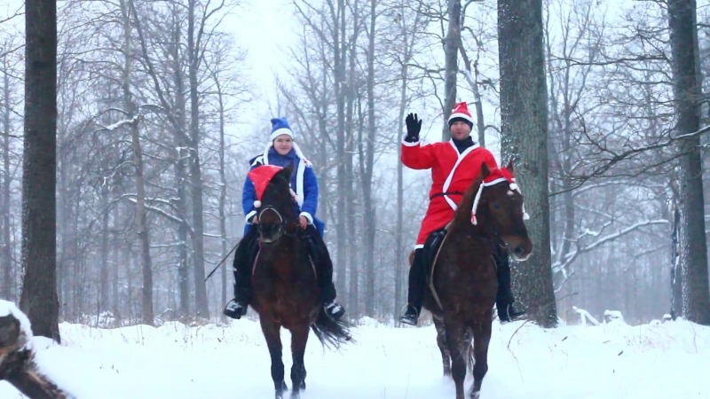 Новогоднее поздравление от конного клуба Центавр