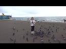 Здравствуй,море!Кормление голубей.