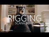 MPC - Rigging Bears - 2017
