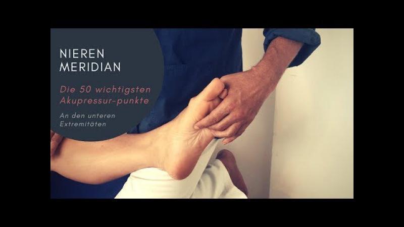 Behandlung des Nierenmeridians - Kursbegleitende Tutorials