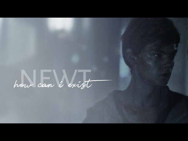 NEWT — how can i exist *・゚✧ (SPOILERS, KINDA)